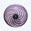 Glass-Paperweights