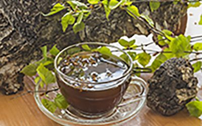 a Chaga Tea Recipe